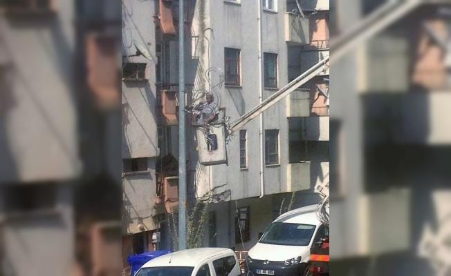 Ankara caddesinin flamingoları geldi