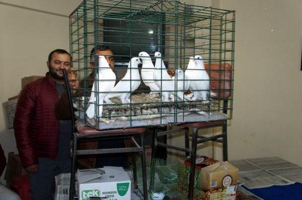 Güvercin Severler Derneği mezadı yapıldı