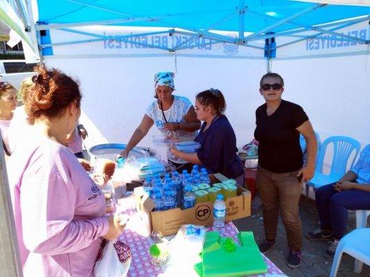 Lapseki'de sokak hayvanları için kermes