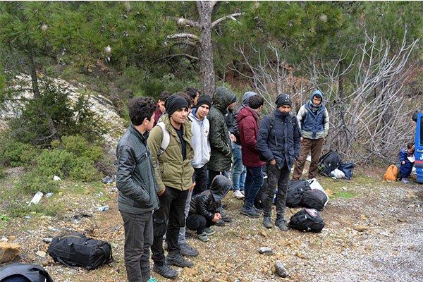 Ayvacık'ta 38 kaçak yakalandı