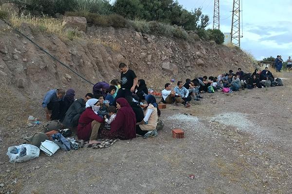 Ayvacık'ta 75 kaçak yakalandı