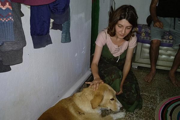 İşkence gören sokak köpeğine hayvan severler sahip çıktı