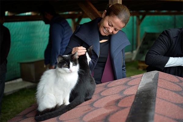 """Ünüvar, """"Kedilerimiz burada özgür ve mutlu"""""""