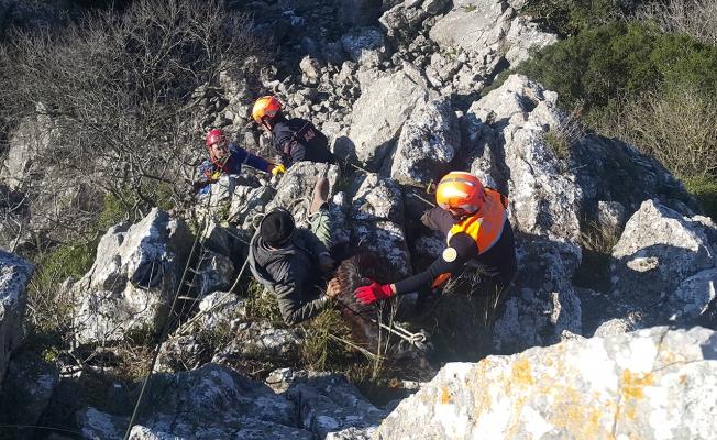 Mahsur kalan keçileri AFAD kurtardı