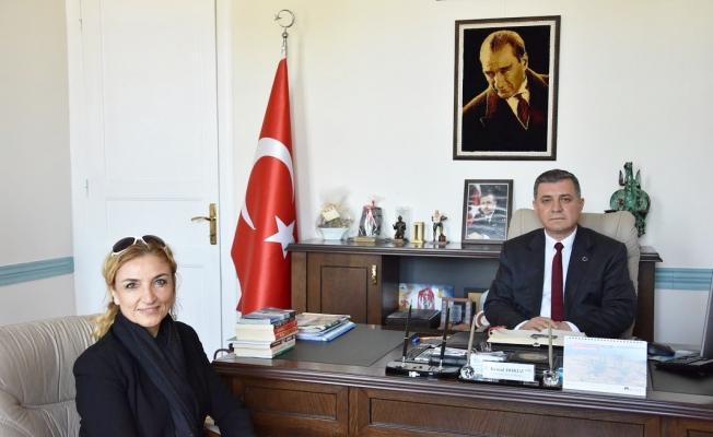 'Aklım Fikrim Çanakkale'