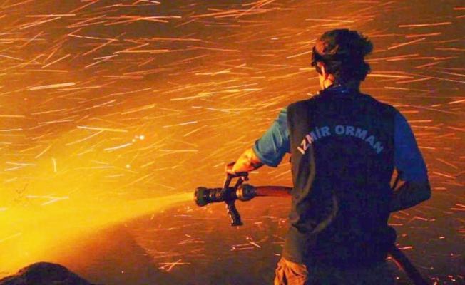 Gelibolu Yarımadası'nda korkutan yangın