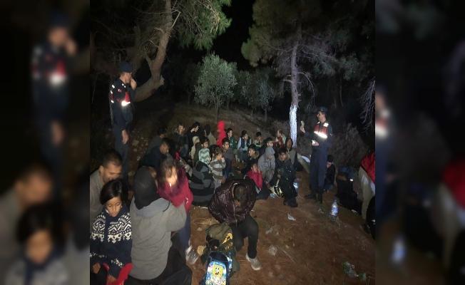 Bir günde 203 kaçak göçmen yakalandı