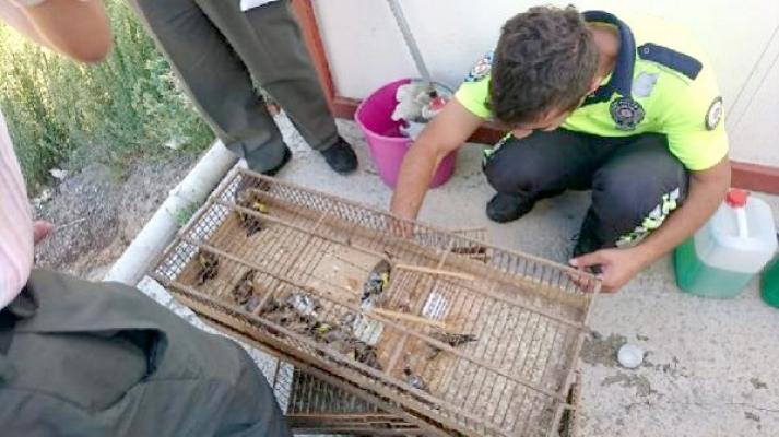 Koruma altındaki kuşları yakalayan şahsa 132 bin TL ceza