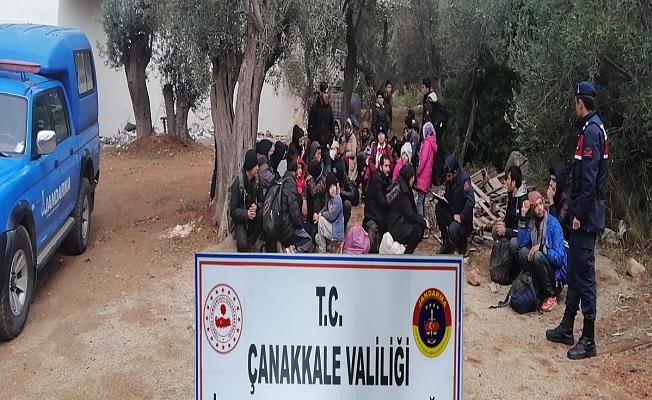 Jandarmadan kaçak göçmen operasyonu (Video)