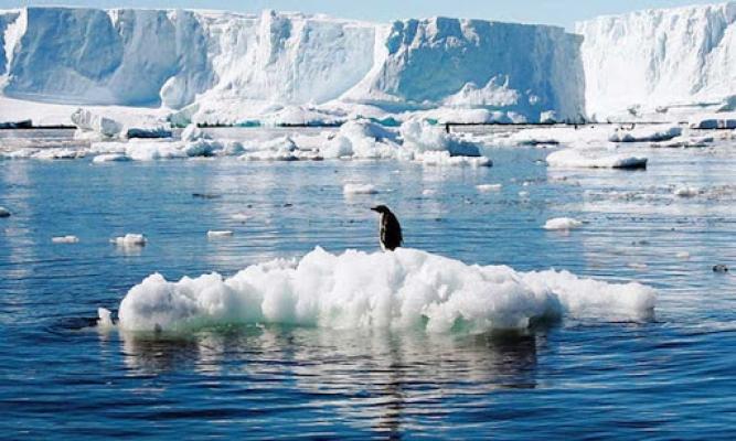 Buzulların erimesi rekor seviyede