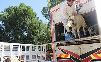 """Elazığ'da """"Genç Çiftçi Desteklenmesi"""" projesi"""