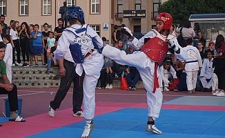 Taekwondo Marmara Şampiyonası ilgi gördü