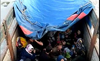 77 Kaçak Göçmen Yakalandı (VİDEO)