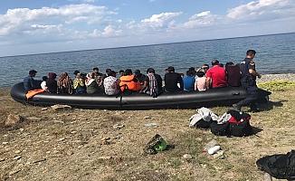 310 Kaçak göçmen yakalandı