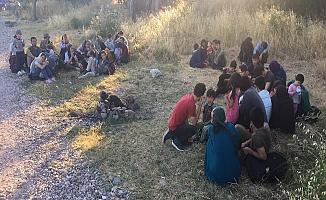 Ayvacık'ta 43 kaçak göçmen yakalandı