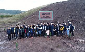 Limak'ın Yeşil Dönüşüm Ormanları şimdi de Bursa'da kök salacak