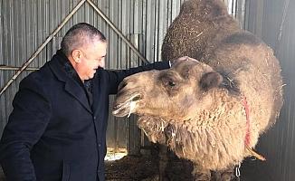 Başkan Oruçoğlu'ndan Avustralya'ya tepki