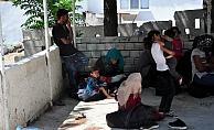 44 mülteci yakalandı