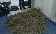 Çanakkale Kemer köyünde uyuşturucu yakalandı