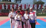 Biga'da karate turnuvası düzenlendi