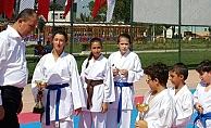 Biga'da karate şöleni sona erdi