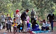 Çanakkale'de dağlık alanda 122 kaçak yakalandı