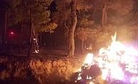 Üç yangın için kundaklama iddiası