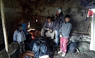 41 kaçak göçmen yakalandı