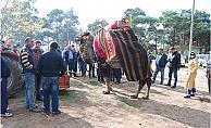 Bayramiç'te havut giydirme töreni yapıldı