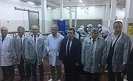 TKDK desteğiyle Yenice'den Avrupa Birliği'ne su ürünleri ihracatı