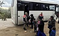 Ayvacık'ta 32 kaçak yakalandı