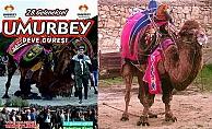 Umurbey Deve Güreşi Festivali 11 Şubat'ta