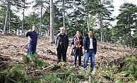 Ulusoy, proje çalışmalarını inceledi