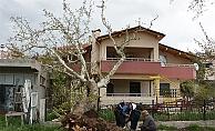 Asırlık ağaç evin çatısına devrildi