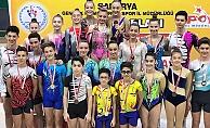 Cimnastikciler Madalyalarla Döndü