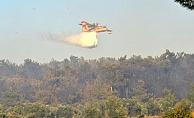 Geyikli'de orman yangını