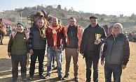 Umurbey'de develer güreşti