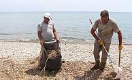 Sahil şeridinde temizlik çalışması