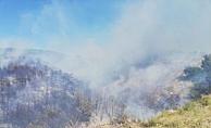 Radar Tepesinde Yangın!! (Video)