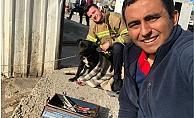 Ağzına konserve sıkışan köpek kurtarıldı