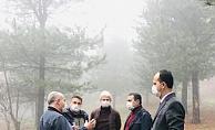 Bal ormanları ekonomiyi canlandırıyor