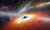 En yaşlı karadelik keşfedildi