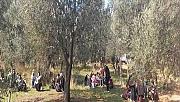 Jandarmadan kaçak göçmen operasyonu (VİDEO)