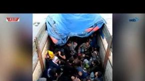 77 Kaçak Göçmen Yakalandı